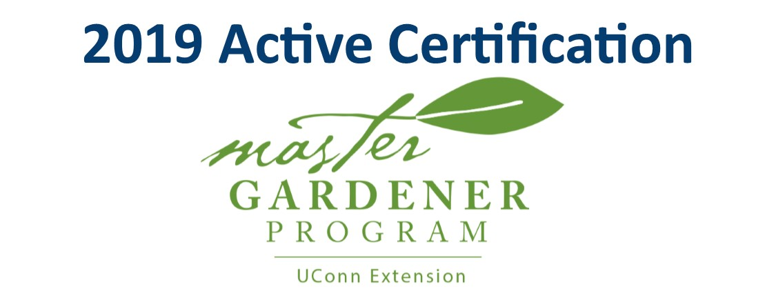 Active Certification 2019 - New Haven