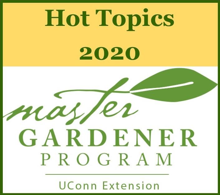 2020 Hot Topics- online class