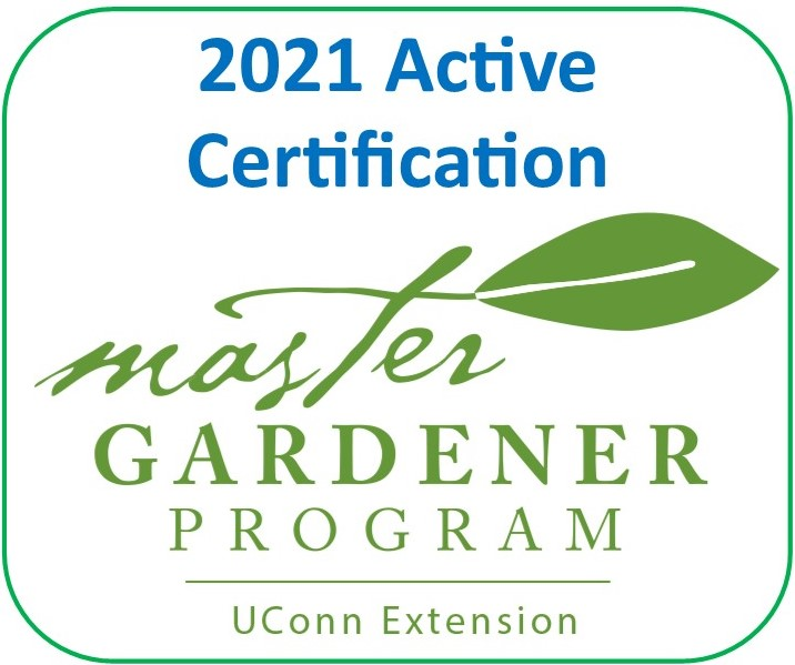 Active Certification 2021 - Tolland